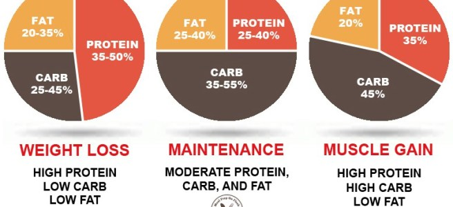 Struggling to your last 5lb? This Mini Masterclass on Counting Macros May Be The Answer